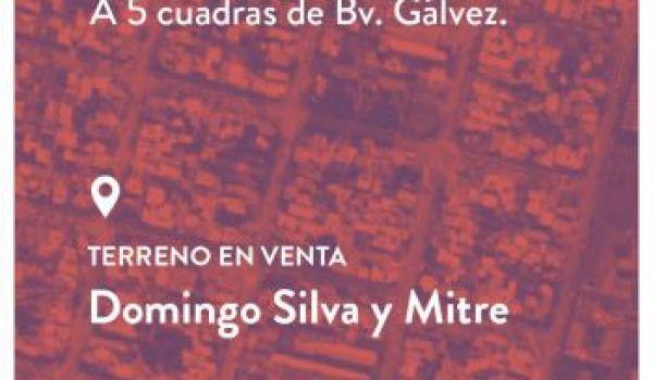 Mitre y Domingo Silva