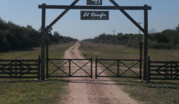 Ruta Nacional N°81